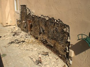 Exterior House Damage Mr D S Painting